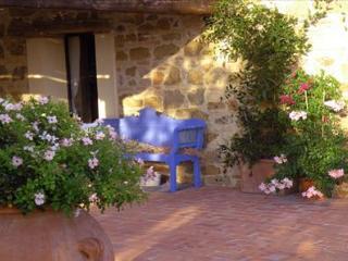 1 bedroom Apartment with Shared Outdoor Pool in Montespertoli - Montespertoli vacation rentals