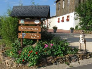 Snowview Lodge - Buellingen vacation rentals
