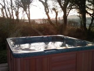 Nice Farmhouse Barn with Internet Access and Dishwasher - Ballydehob vacation rentals