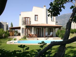 Figtree Villa - Hisaronu vacation rentals