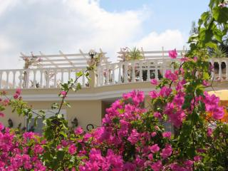 Honeymoon Villa Alanya - Private Pool & Gardens - Kargicak vacation rentals