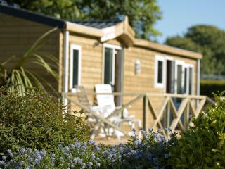 Lovely Lodge with Garden and Short Breaks Allowed - Newquay vacation rentals