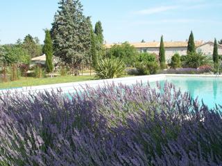 Mas d' Esquirolly, charme provençal, calme - Tarascon vacation rentals