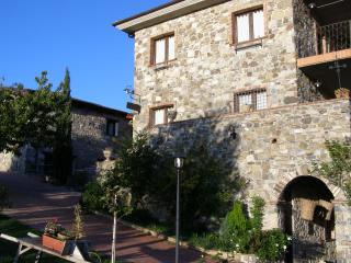 Nice Farmhouse Barn with Internet Access and Wireless Internet - Piaggine vacation rentals