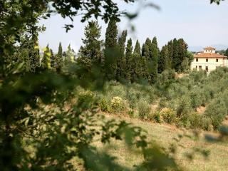 Agriturismo I Moricci-Pendolin - Fabbrica di Peccioli vacation rentals