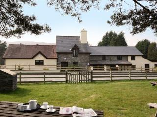 Vulcan Lodge - the Searle Holiday Cottage - Llanwrthwl vacation rentals