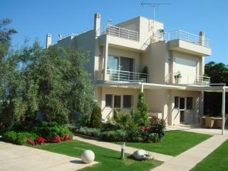 Beautiful Villa with Internet Access and Dishwasher - Drossia vacation rentals