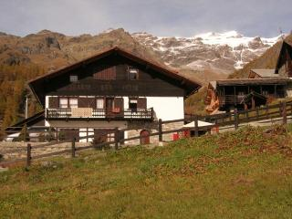 chalet flavia GRESSONEY LA TRINITE - Gressoney-la-Trinite vacation rentals