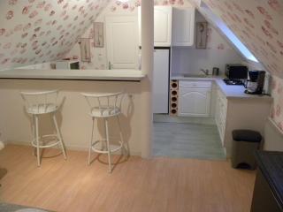 Appartement en Touraine - Azay-sur-Cher vacation rentals