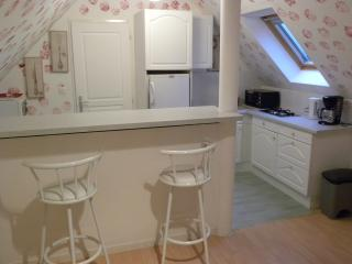 Cozy Azay-sur-Cher Studio rental with Internet Access - Azay-sur-Cher vacation rentals