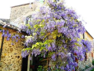 Villa Patrignone 7 bedroom Tuscany villa with pool - Castellina In Chianti vacation rentals
