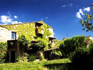 Villa Patrignone - Castellina In Chianti vacation rentals