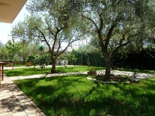 IDEAL FOR LARGER FAMILIES or LARGER GROUPS - Zadar vacation rentals