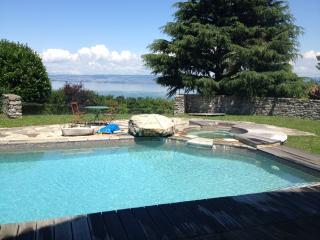 Stone Villa Evian - Évian-les-Bains vacation rentals