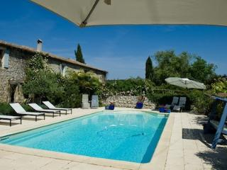 Luxury 5 * Provencal Gites  with accessibillity - Canaules-et-Argentieres vacation rentals