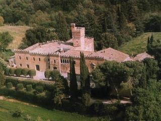 Sarteano - 57465005 - Chiusi vacation rentals