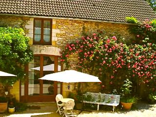 Dordogne Barn Conversion close to Lascaux/Sarlat - Condat-sur-Vezere vacation rentals