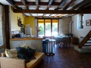 Loire Valley Excellence - Les Vignes - stone house - Montresor vacation rentals