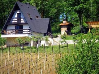 Amazing Cottage Bitosevje Croatia Trakoscan - Varazdin Country vacation rentals
