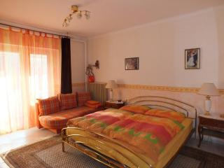 Family holidays with pets next to thermal bath - Tolna vacation rentals