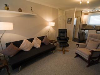 Luxury Flat Convenient Locatio - Hamilton vacation rentals
