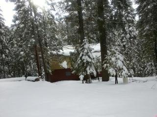 2 bedroom Cabin with Deck in Shaver Lake - Shaver Lake vacation rentals