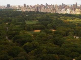 CENTRAL PARK ADJACENT LUXURY CITY VIEWS SLEEPS 1-4 - West New York vacation rentals