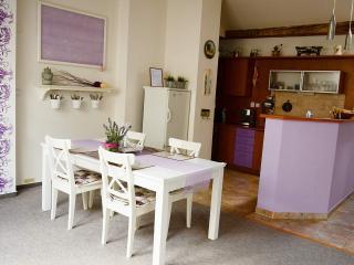 Sunny & Spacious Provence Apartment - Prague vacation rentals