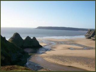 Cosy stone cottage,Reynoldston the heart of Gower - Reynoldston vacation rentals