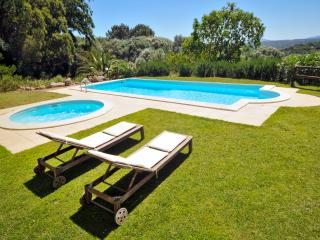 Private Villa, Pool & Gardens - Bassacutena vacation rentals