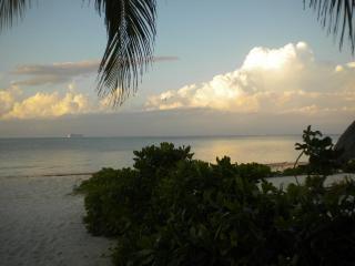 """condo """"La Chica"""" at Casa Blanca North Beach - Cozumel vacation rentals"""