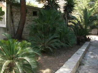 Nice Villa with Internet Access and Grill - Alcamo vacation rentals