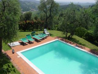 Henry - Lucca vacation rentals