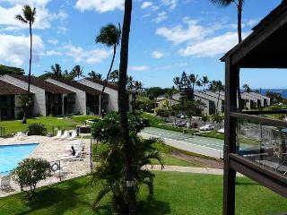 Hale Kamaole 2 Bedroom 335 - Kihei vacation rentals