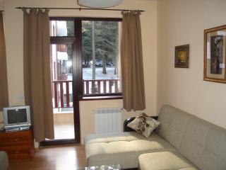 Cozy Borovets Studio rental with Television - Borovets vacation rentals