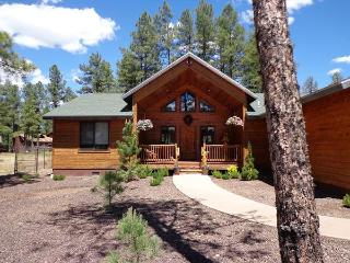 Exquisitely Decorated Mountain Retreat - Pinetop vacation rentals