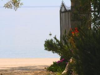 Platanofylla Apartments Pelion - Kala Nera vacation rentals