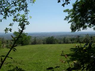 Villa in  Tuscany with spectacular view - Capraia e Limite vacation rentals
