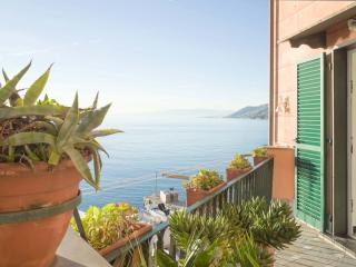 Comfortable 2 bedroom Apartment in Camogli with Internet Access - Camogli vacation rentals