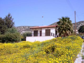 No 1 Halcyon Villas,Akoursos - Kathikas vacation rentals