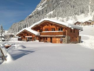 Nice Condo with Internet Access and Satellite Or Cable TV - Pralognan-la-Vanoise vacation rentals