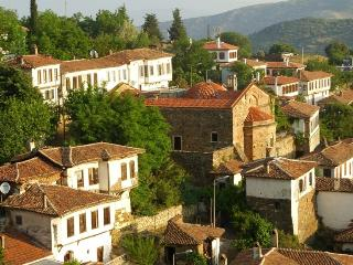Grapevine House - Selcuk vacation rentals