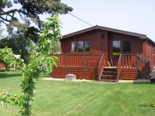 Comfortable Cabin with Internet Access and Television - Fleckney vacation rentals