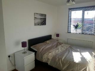 Bay Apartments 2 - Wolverhampton vacation rentals