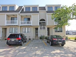 Beautiful 3 bedroom Vacation Rental in Stone Harbor - Stone Harbor vacation rentals