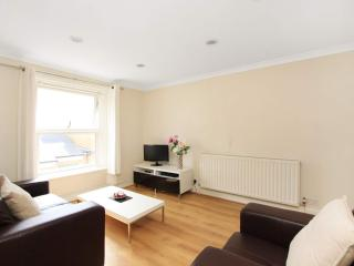 PERFECT 2 bed apartment *LONDON* Zone 1 - London vacation rentals