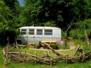 The Hippy Van - Llandysul vacation rentals