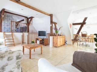 Charming gite in Ohlungen near Haguenau/Strasbourg - Bas-Rhin vacation rentals