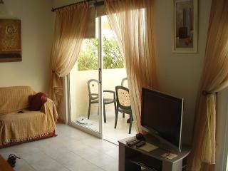 Lovely Condo with A/C and Satellite Or Cable TV - Kissonerga vacation rentals