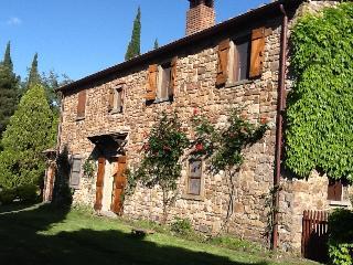 Ville Alto: peaceful Tuscan villa in the Cortona countryside - Cortona vacation rentals